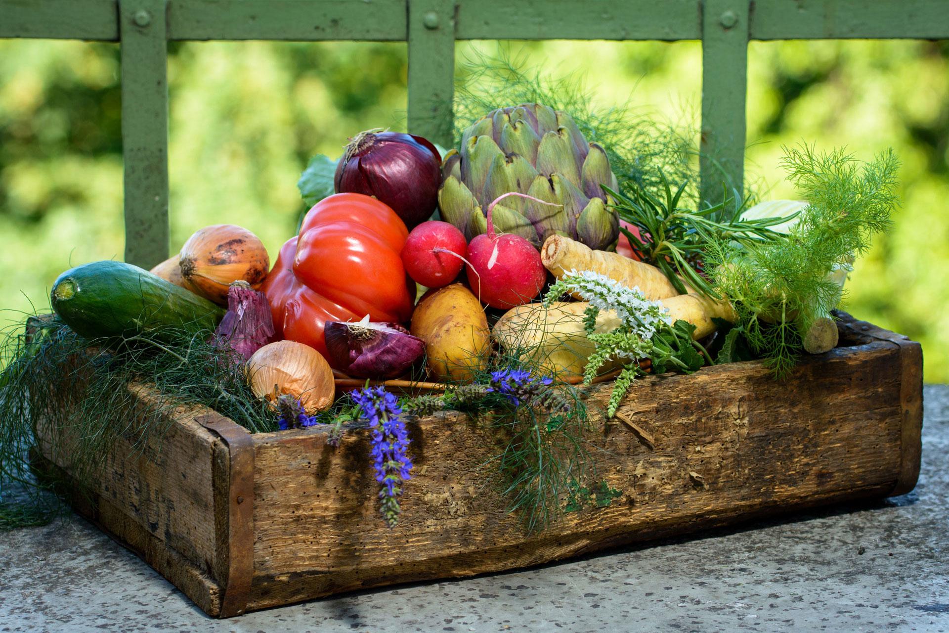 Ernährungsmedizin, ernährungsmedizinische Leistungen, Internist, Internisten, Ernährungsmediziner, gesunde Ernährung